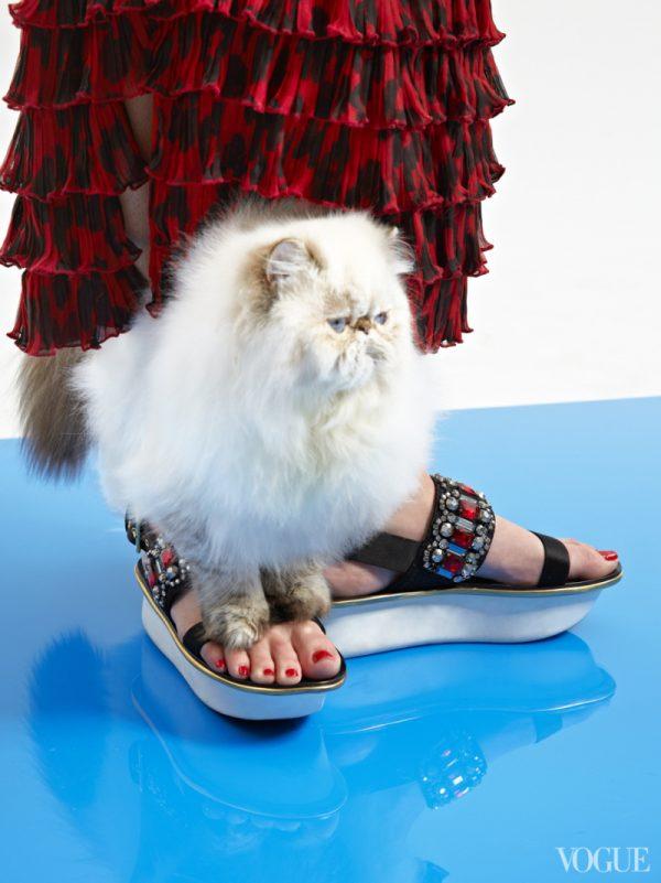 marni-sandals